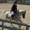 Kim & Snort at a canter in Arabian Hunter Pleasure Class 06-14-14