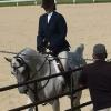 Kim & Snort 06-14-14 In Arabian Hunter Pleasure Class