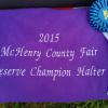 08-09-15 Congrats to SAA Snort N Blow for being named  2015 McHenry County Fair Reserve Grand Champion Halter Horse of the show